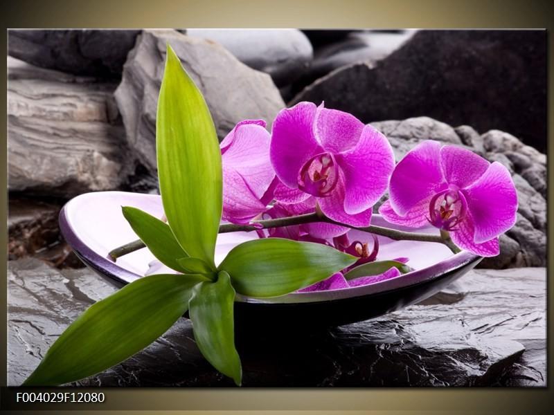 Lila orchidea kompozíció vászonkép: http://odea.hu/lila-orchidea-kompozicio-vaszonkep